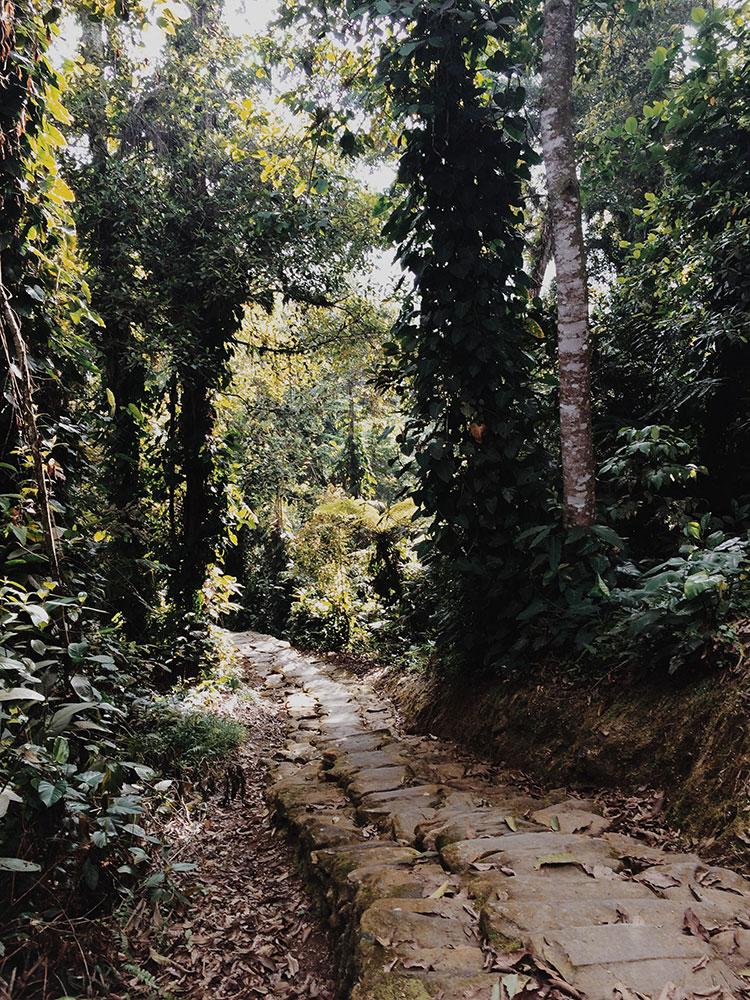 Ciudad-Perdida-Colombia13