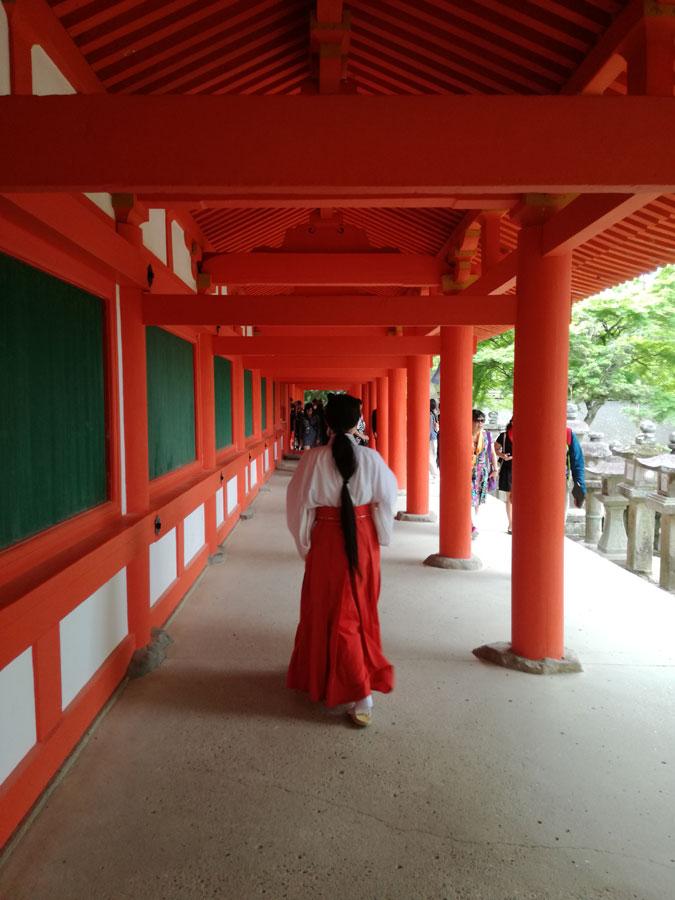 kasuga-temple