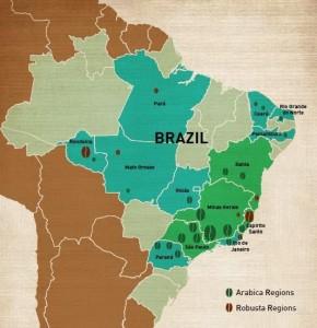 mappa piantagioni caffe brasile