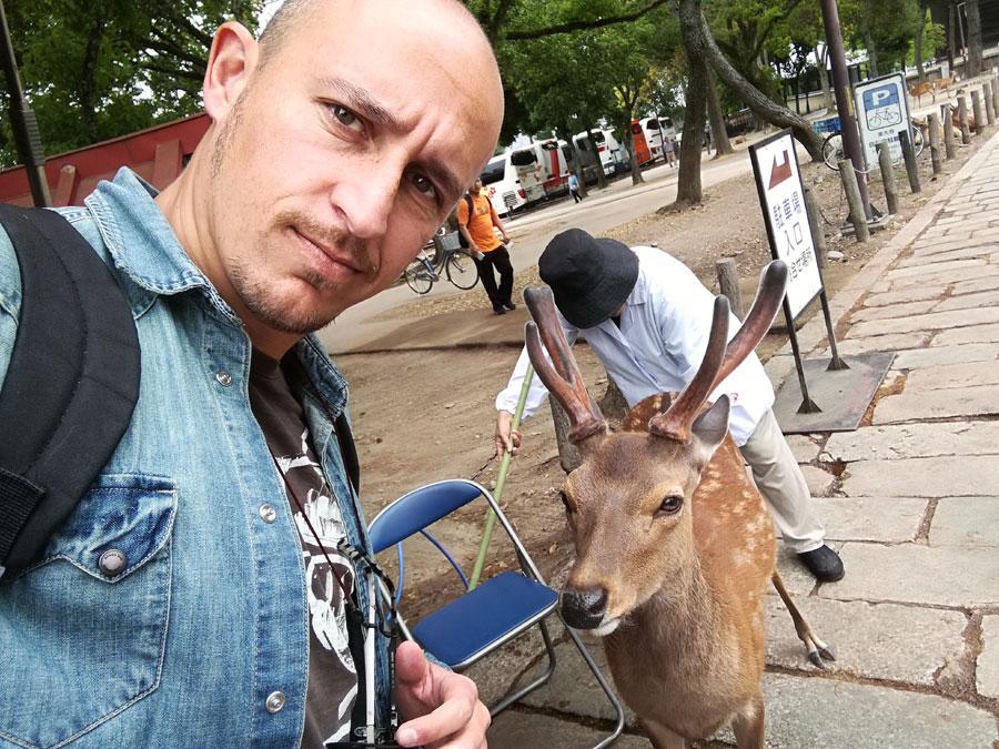 rocco-sur-in-Nara