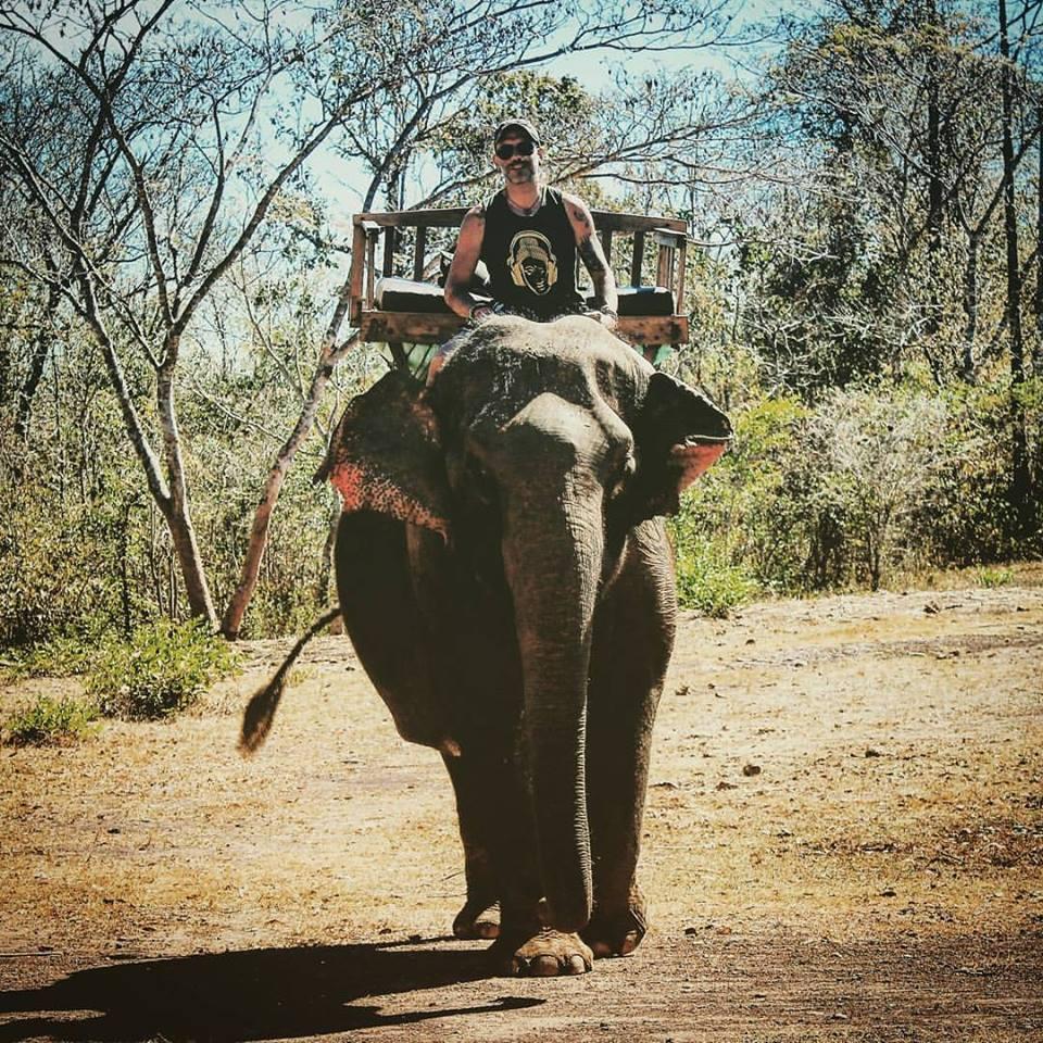 simone elefante