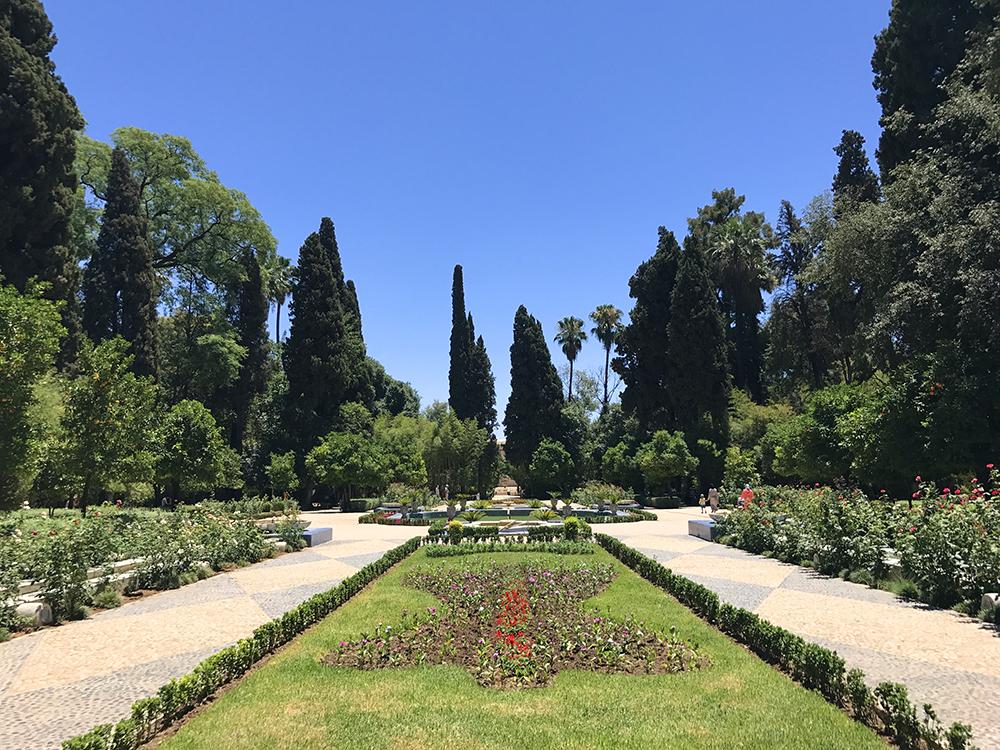 Giardini pubblici città di Fez