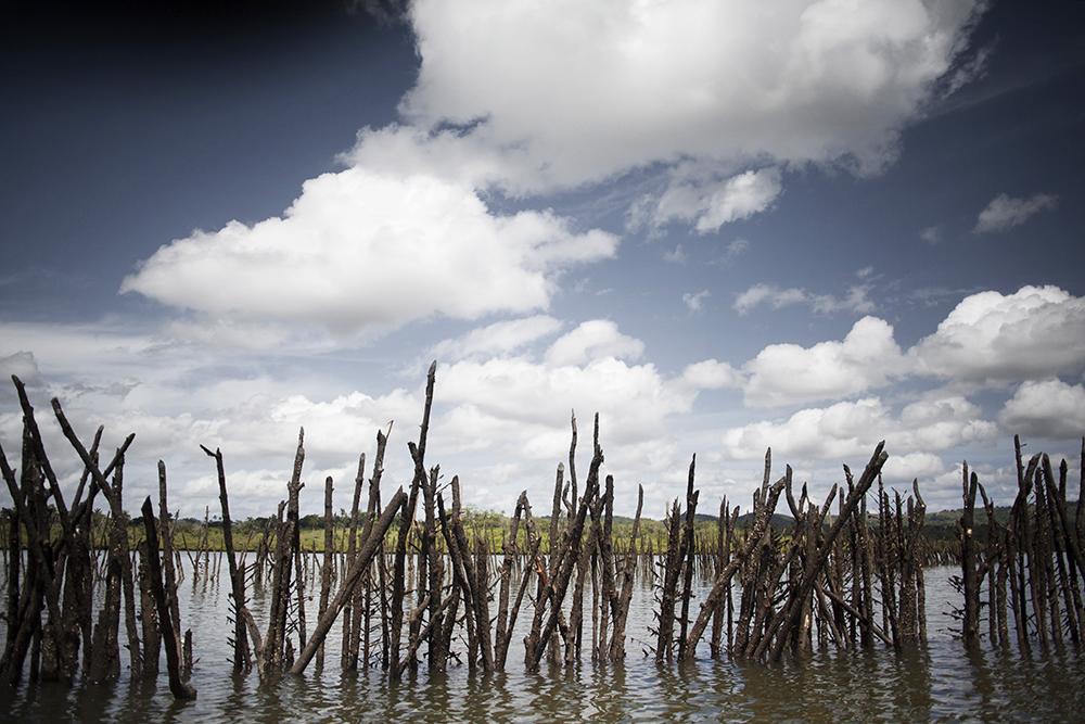 rio paraguazu 01
