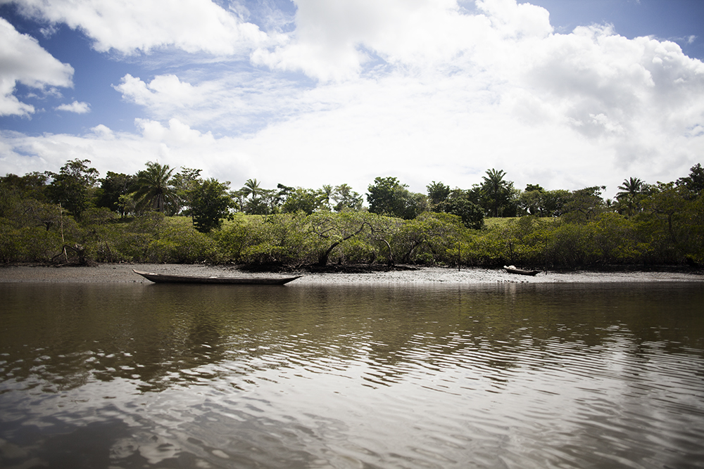 Paraguazu