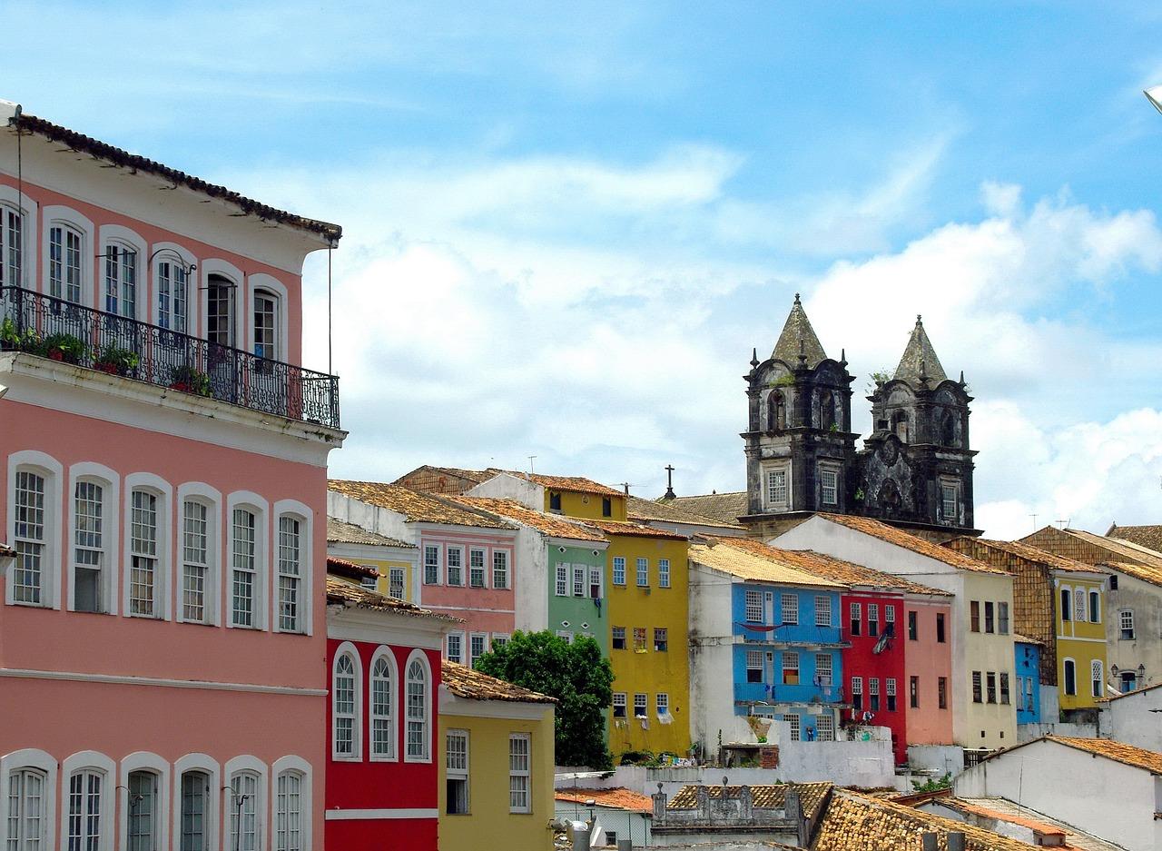 brazilwood-1115523_1280