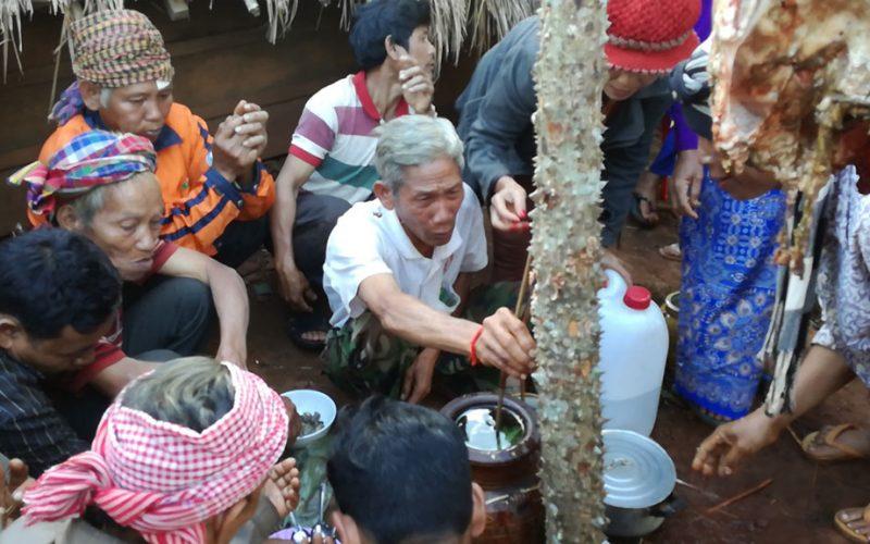 cambogia-putang-9