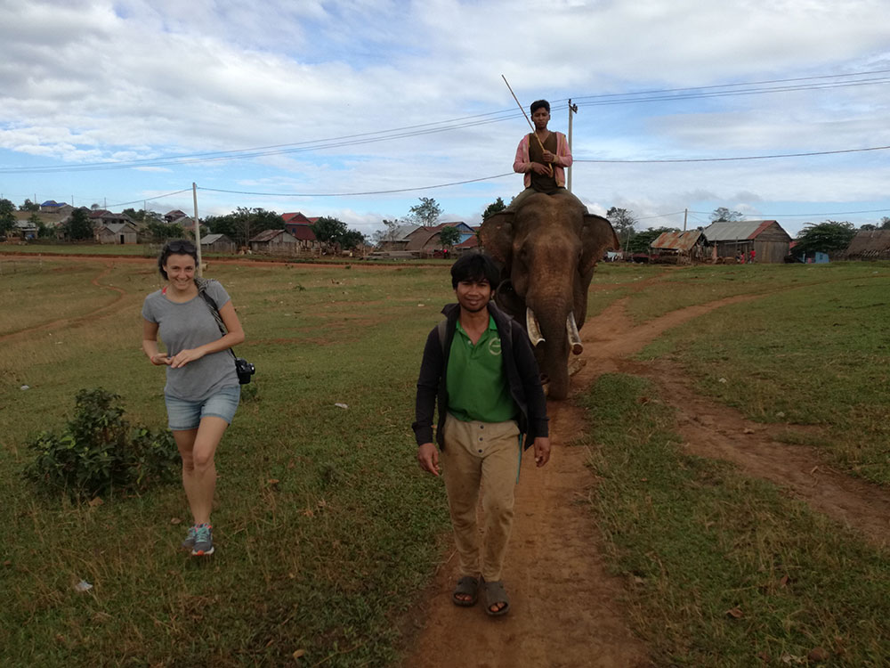 elefanti-mondolkiri