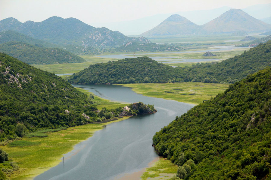 montenegro-verde-01