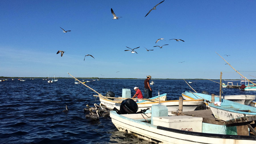 pescatori-san-felipe-messico