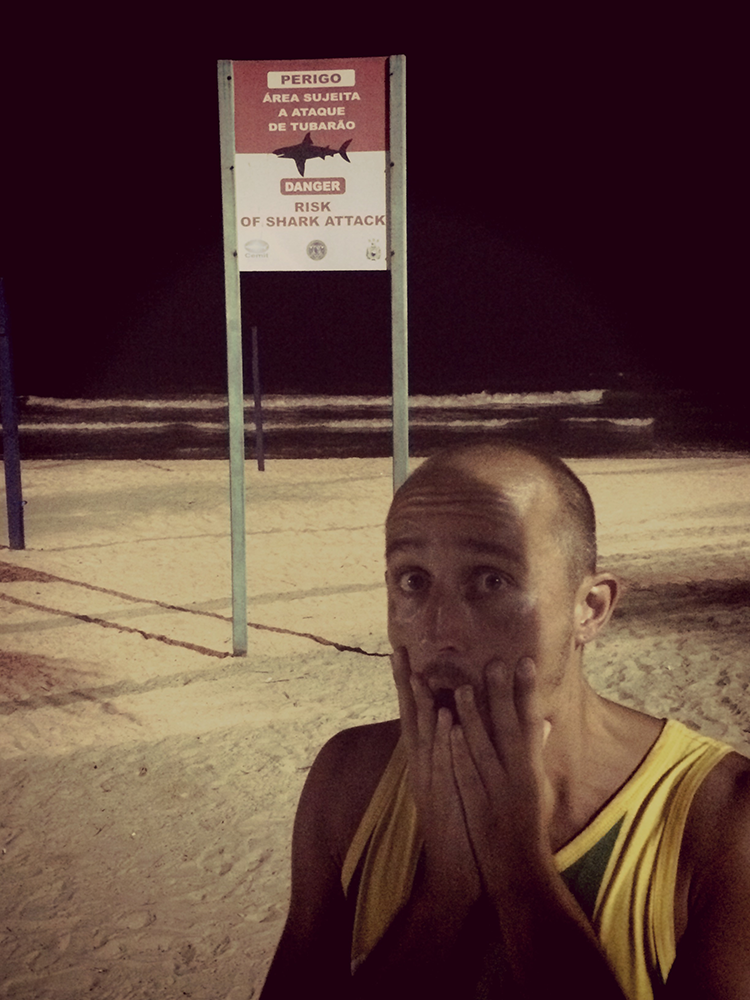 shark-of-Recife